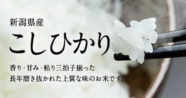 新潟県産こしひかり5kg・10kg・25kg(新潟コシヒカリ100%)