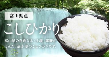 富山県産こしひかり5kg・10kg・25kg(富山コシヒカリ100%)