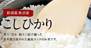 新潟県魚沼産こしひかり5kg・10kg・25kg(新潟魚沼コシヒカリ100%)