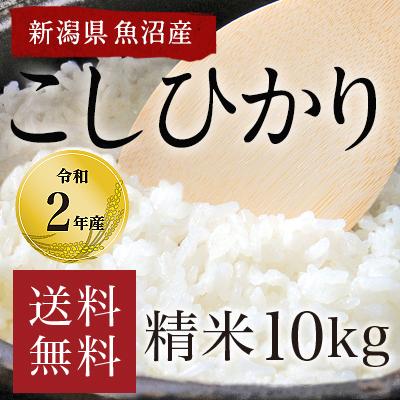 新潟県魚沼産こしひかり10kg